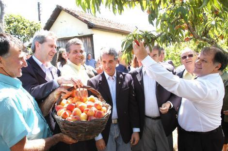 Presidente (d) colheu frutas cultivadas na Zona Sul de Porto Alegre Foto: tonico alvares