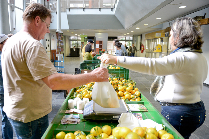 Feira de alimentos orgânicos