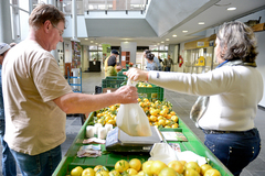 Capital tem várias feiras de produtos orgânicos