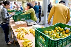 Proposta da comissão especial é regulamentar atividade das feiras orgânicas na cidade (Foto arquivo CMPA)