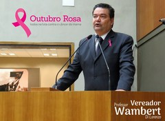Mais de 14 mil mulheres já foram vítimas do câncer de mama. Os dados são de 2013. Foto: Marco Pecker