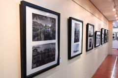 Fotos premiadas e selecionadas integram exposição realizada na Câmara Municipal