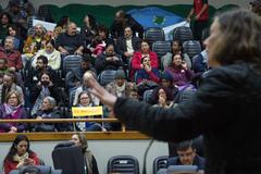 Os parlamentares se revezaram à tribuna para discutir emendas apresentadas