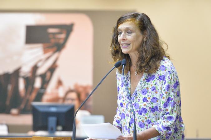 Movimentações de plenário. Na foto, a vereadora Sofia Cavedon.