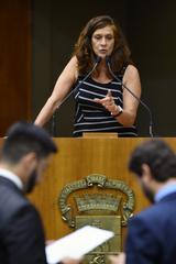 Movimentação de plenário. Vereadora Sofia Cavedon na tribuna