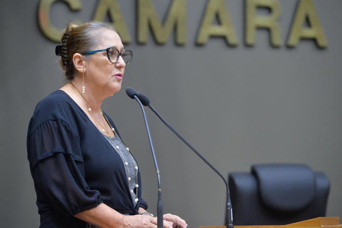 Movimentações de plenário. Na foto, a vereadora Lourdes Sprenger
