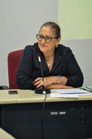 Reunião de comissão sobre acumuladores de objetos e animais na cidade de Porto Alegre. Na foto, a vereadora Lourdes Sprenger.