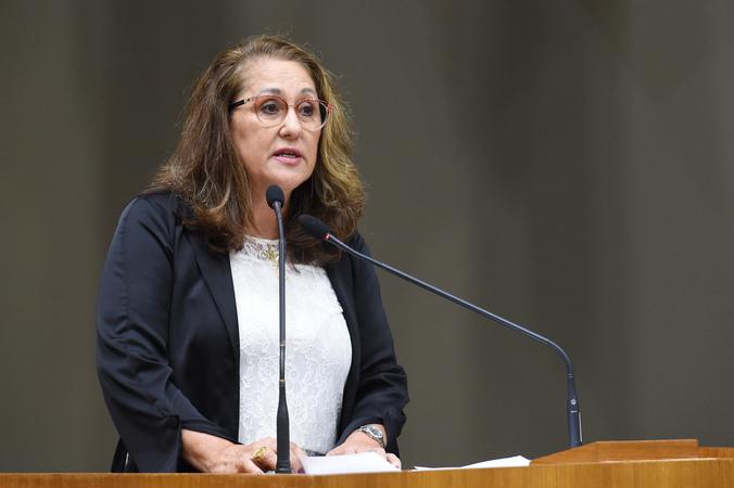Movimentações de plenário. Na foto, a vereadora Lourdes Sprenger.