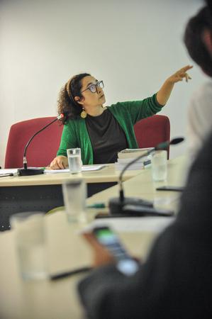 Reunião do grupo de Trabalho da Comissão Especial Legislativa junto de equipe técnica da Câmara. Ao microfone, a taquígrafa, Rosimeri da Silva Chaves.