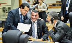 Debates e votações em plenário
