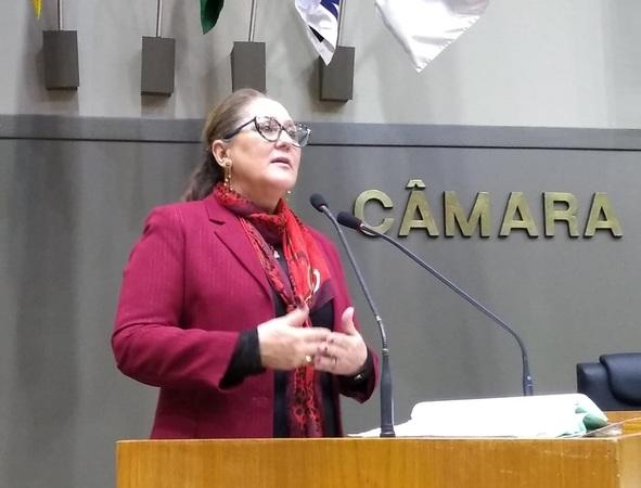 Vereadora Lourdes, Presidente da Frente Parlamentar