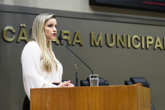 A delegada Cristiane Pires Ramos apresentou na Câmara ações para proteção ao idoso