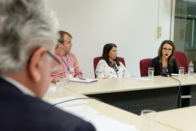 Comissão Especial de Prédios Abandonados debate a gestão dos órgãos municipais. Na foto, representando a SMAMS, a Sra. Ana Tércia.