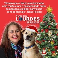 Saudação de Natal da vereadora Lourdes Sprenger