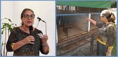 Aberto edital para Unidade de Saúde Animal