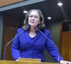 Vereadora Lourdes em Plenário