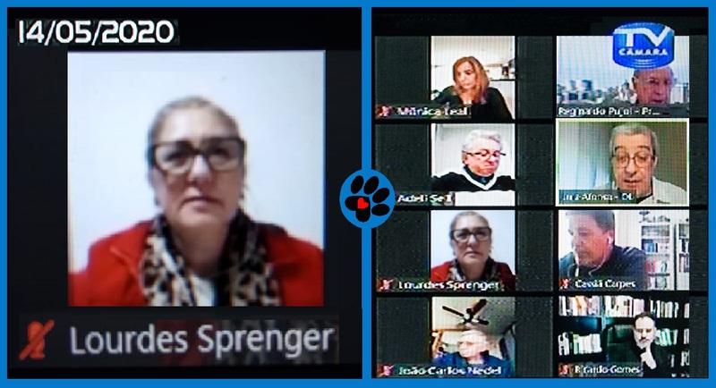 Vereadora Lourdes na sessão virtual de 14 de maio
