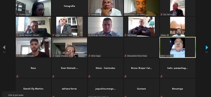 Secretária, vereadores e assessores acompanharam apresentação do relatório em reunião virtual