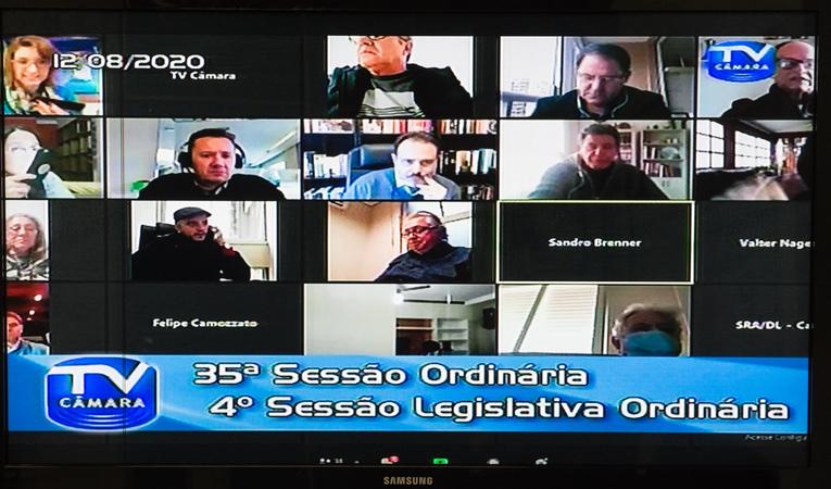35ª Sessão Ordinária da 4ª Sessão Legislativa Ordinária. Votação deprocessos durante a pandemia.