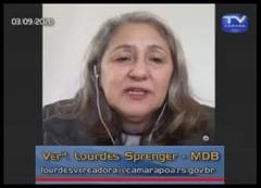 Ver. Lourdes Sprenger em plenário virtual
