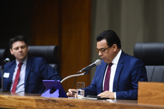 Depoimento, por meio de vídeo conferência, do ex-ministro da Saúde Luiz Henrique Mandetta. Na foto, vereador Alvoni Medina, relator