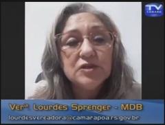 Lourdes Sprenger em plenário virtual