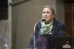 Vereadora Lourdes Sprenger discursa no plenário da Câmara.