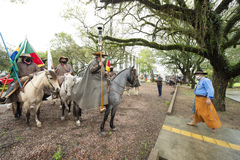 Presidente Márcio Bins ELy recebe a Chama Crioula de cavalarianos do MTG juntamente a vereadores e autoridades e visitam exposição alusiva ao bicentenário do nascimento de Anita Garibaldi.