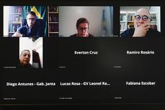 Reunião da comissão foi realizada de modo virtual